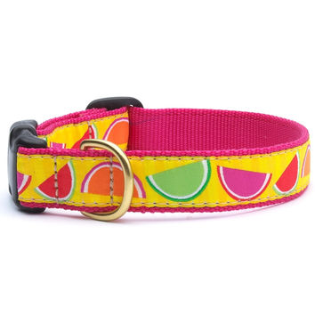 Candy Slices Dog Collar
