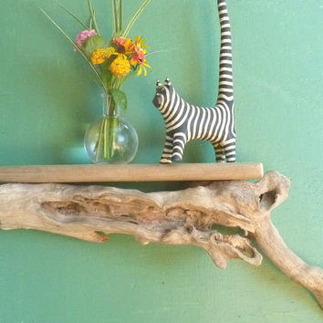 Driftwood Wall Shelf,  Natural Driftwood Hanging Shelf, Beach House Decor, Display Shelving, Bedroom decor, wall decor, Hanging Wood Art,
