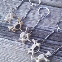Raccoon Vertebrae Bone Keychain, Bone Key Chain, Tribal  Boho Keychain, Real Animal Bone Jewelry, Spine Keychain, Wiccan Pagan Keychain