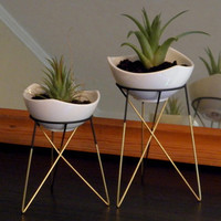 S geometric plant stand with a little white ceramic flower pot | himmeli | elegant geometric terrarium | metal brass soldered