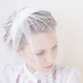 Women Accessories Weddings Veil Off White Bridal Head Piece Fascinator Head Band Birdcage Veil Dragonfly Brooch Free Worldwide Shipping
