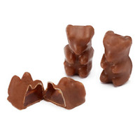 Milk Chocolate Covered Gummi Bears: 8LB Tub