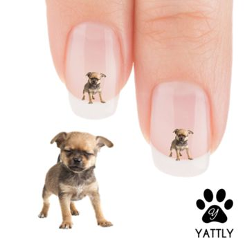 "Chihuahua ""Who said that"" Nail Art Decals ( NOW 50% MORE FREE)"