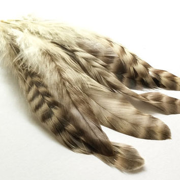 Feathers Rooster Schlappen | Earrings feathers | Millinery Jewelry Crafts supplies| Hair accessories Material Natural Striped FA03