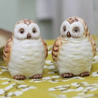 Charming Owl Salt And Pepper Shakers