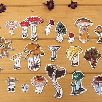 Set of 22 Mushroom Stickers