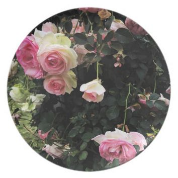 Spray of Pink Roses Plate