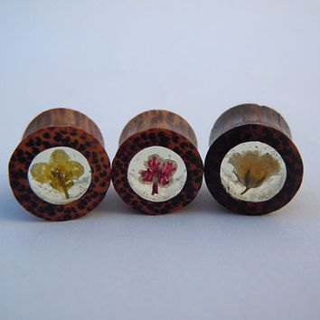 Real Flower Organic Bone Plugs / Gauges. 0g / 8mm, 00g / 10mm. Violet Red & White, Yellow or White by Gauge Queen on Etsy