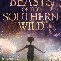 Beasts of the Southern Wild Hushpuppy Movie Poster 11x17