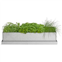 Windowsill Recycled Steel Grow Box - Trio of Herbs (491565376), Organic Garden Plants, Herb Garden & Terrariums | bambeco