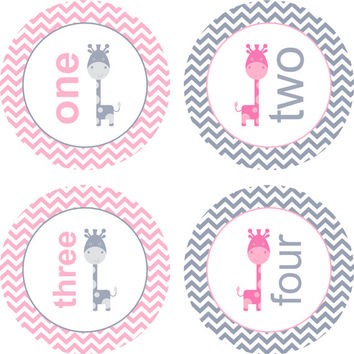 Pink and Grey Giraffe, Chevron, Monthly Baby Milestone Stickers, Baby Girl, Baby Shower Gift, One-Piece, Baby Stickers, Monthly Photo Prop