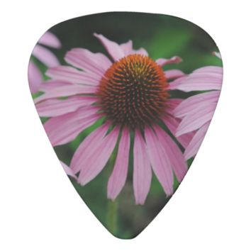 Pink Cone Flower Group Guitar Pick