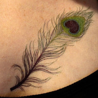 Peacock Feather Temporary Tattoo - so pretty
