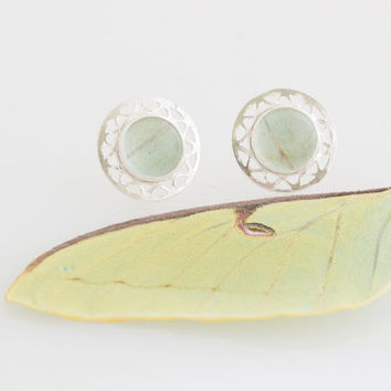 Real butterfly wing earrings with Green Luna Moth