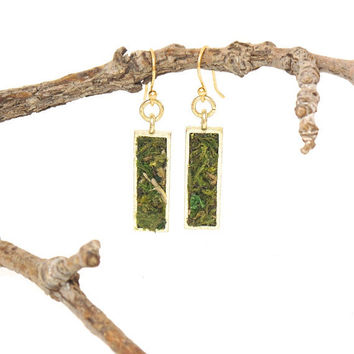 Moss Earrings, Eco Friendly, Terrarium Jewelry, Living Plant Jewelry, Garden Gift, Gardener