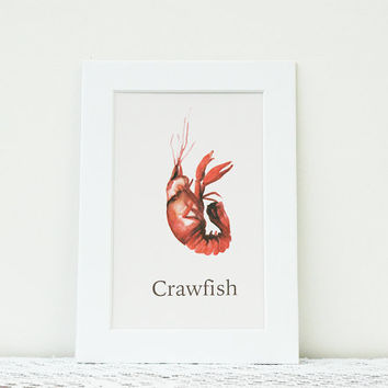 Kitchen Decor, Crawfish Kitchen Watercolor Print, Seafood Print, Crustacean Watercolor Art, Kitchen Art, Gifts for Cooks, Matted Print