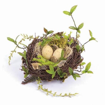 12 Birds Nests - Accented With Eggs And Greenery