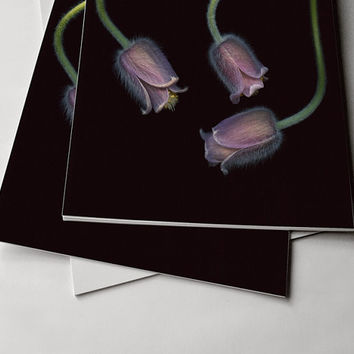 Purple Velvety Modern Floral Wall Print. Pasque Flowers Large Scale Fine Art Print. Pulsatilla photography.Sizes from 4x6 to 30x40.