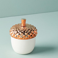 Acorn Candle