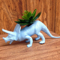 Up-cycled Blue Triceratops Planter