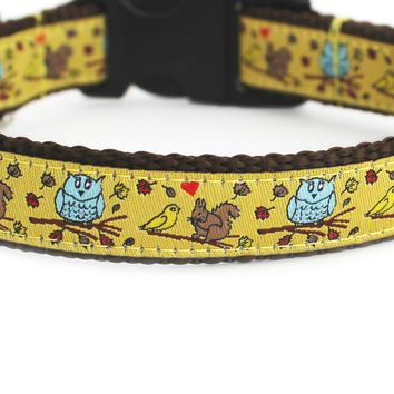 In the Fall Dog Collar