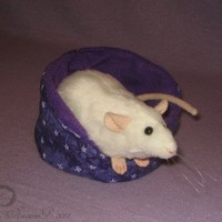 White Rat Plushie/Stuffed Animal