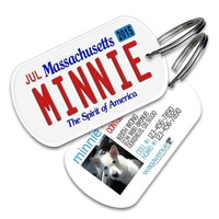 Massachusetts License Plate Pet Tag