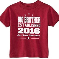 Lil Shirts Big Brother EST. 2016 Little Boys Youth and Toddler Shirt