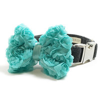 Dog Collar Bow - Turquoise Chiffon Dog Collar Bow - Dog Collar Attachment - Dog Collar Accessory - Girl Dog Bow - Wedding Dog Bow