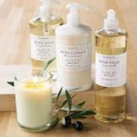 Williams-Sonoma Essential Oils Collection, Olive Oil