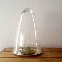 Tall Glass Cloche and Silver Tray  - Garden Cloche - Shabby Decor - Glass Dome