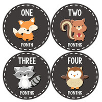 Months In Motion - Baby Month Stickers - Monthly Baby Sticker for Boys or Girls - Woodland Animals (1091)