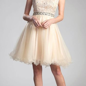 Champagne Cap Sleeved Homecoming Short Dress with Appliqued Bodice