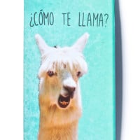 Cómo Te Llama iPhone 6 Case LIGHT GREEN One