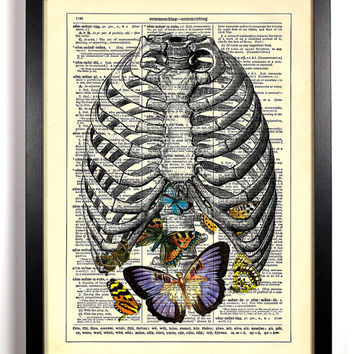 Anatomy Rib Cage Butterflies Repurposed Book Upcycled Dictionary Art Vintage Book Print Recycled Vintage Dictionary Page Buy 2 Get 1 FREE