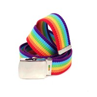 Canvas Rainbow Belt In Multi/Silver Buckle | Thirteen Vintage