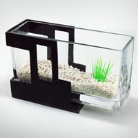 Mini-Aquarium for Office / Home