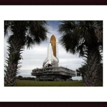 Palmetto trees frame space shuttle Endeavour as it rolls toward the launch pad., framed black wood, white matte