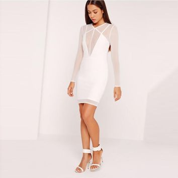 Women Long Sleeve Female Straight Dress Sexy Solid White Sheer Zippers Bodycon Dress