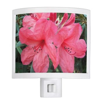 Red Rhododendrons Floral Night Light