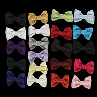 Poly Silk Solid Boys Clip-on Bow Tie in Assorted Colors