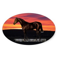 Brown Horse Oval Sticker
