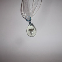 Unique Shark Tooth Fossil Pear Shape Resin Pendant with White Ribbon Necklace