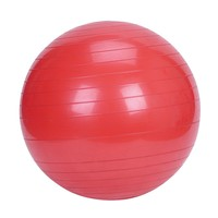 Sunny Health & Fitness Exercise Ball (Red)
