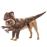 Pet Raptor Costume - Dinosaur Costumes for Dogs