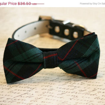 Plaid Green bow tie, Bow attached to black leather collar, Chic Dog Bow tie, Green Dog Bow, Dog Lovers