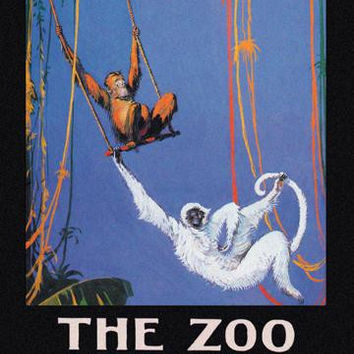 The Zoo Monkeys 20x30 poster