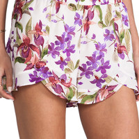 Jack By BB Dakota Kelton Orchid Printed Shorts in White Cap from REVOLVEclothing.com