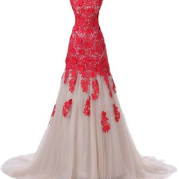 Mic Dresses Women's Lace Prom Dresses for Evening Formal Gowns Long
