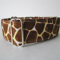 "1.5"" Martingale Collars, Giraffe Martingale Collar, Giraffe Dog Collar, Brown Dog Collar, Made in Canada, Sighthound Collar"